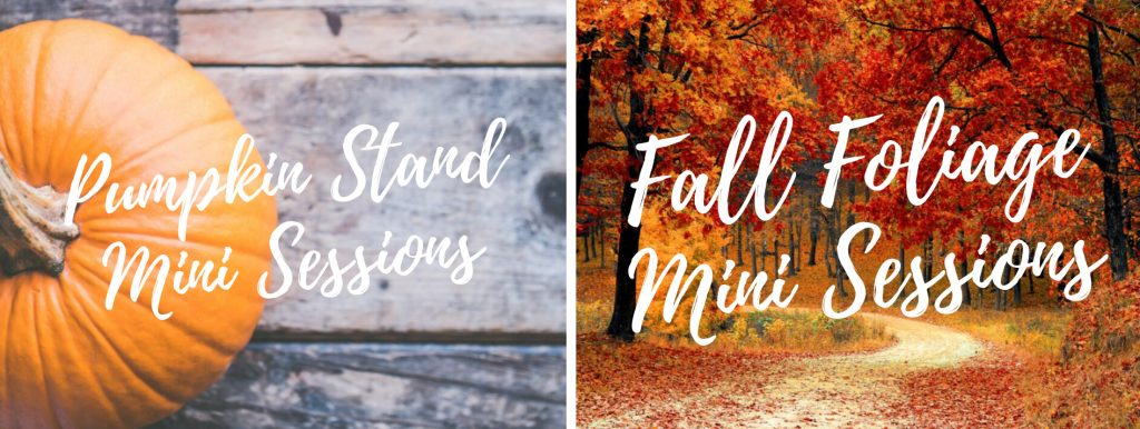 Pumpkin Stand Mini Sessions and Fall Foliage Mini Sessions