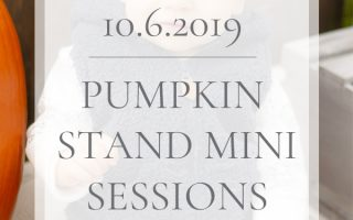 Pumpkin Stand Mini Sessions