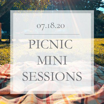 Picnic Mini Sessions