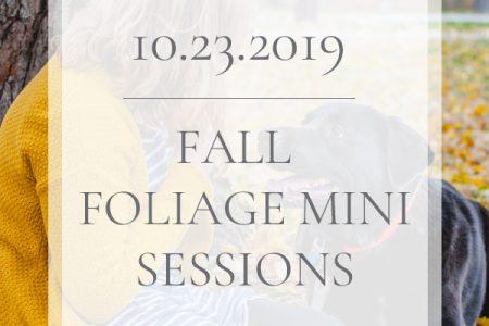 10.23.2019 Fall Foliage Mini Sessions