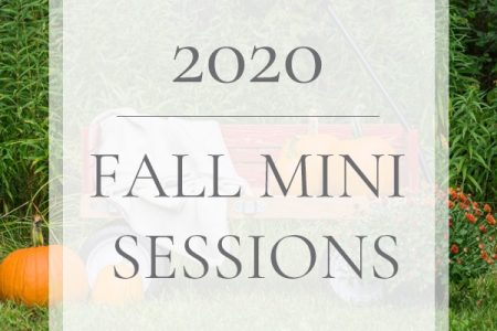 2020 Fall Mini Sessions