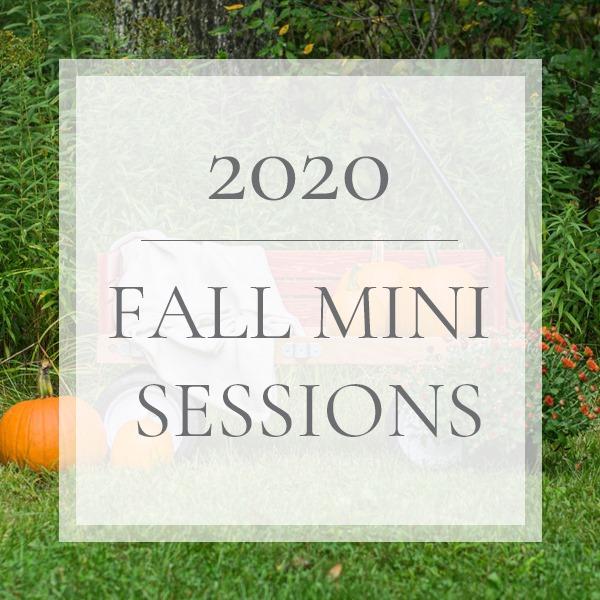 2020 Fall Mini Sessions