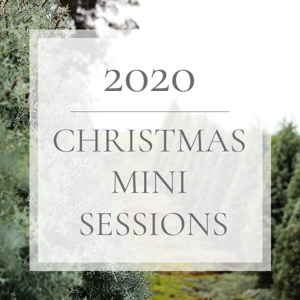 2020 Christmas Mini Sessions
